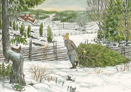 Sven Nordqvist - Kerstboom halen met Findus