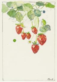 Claudia Brandt - Aardbeien