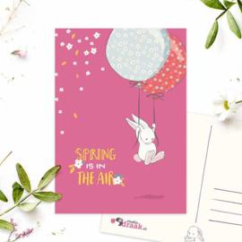 Studio Draak - 'Karakteristieke konijntjes'  Ballonnen | Spring is in the air