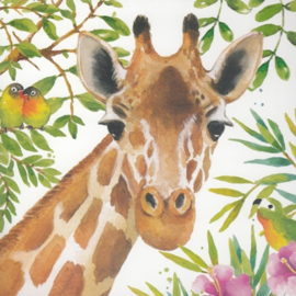 Carola Pabst - Giraffe