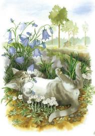 Inge Löök : Kat tussen de hyacinten - NR 114
