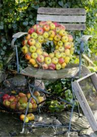 Flora Press - Appel krans