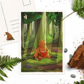 Studio Draak - 'Beren willen leren'  Voorlezen