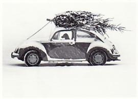 Okapia - Hondenarbeid ;-)