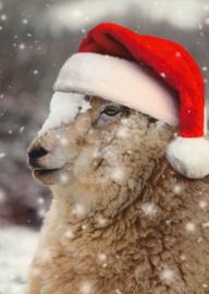 Fauna Press - Schaap met kerstmuts