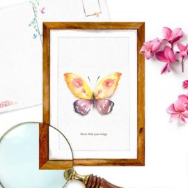 Studio Draak - 'Vlindervleugels'  Never hide