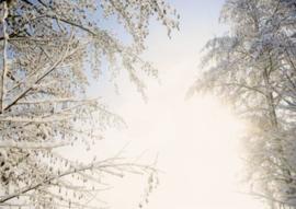 FotoEigenArt - Winterlucht