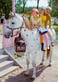 Pippi Langkous - Samen op het paard
