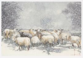 Friederike Rave - Schapen in de sneeuw