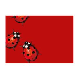 C6 Envelop  - Ladybug (1x)