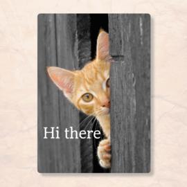 ZintenZ - Hi there