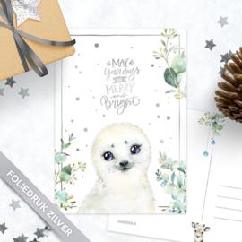 Studio Draak - 'Sneeuwbeestjes'  Zeehond