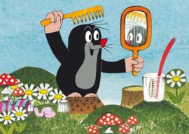 Het molletje - Voor de spiegel