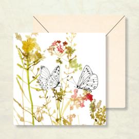 Maartje van den Noort - Vlinders