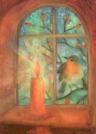 Angela Koconda - Roodborstje voor het raam