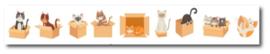 Only Happy Things - Washi tape Katten in dozen