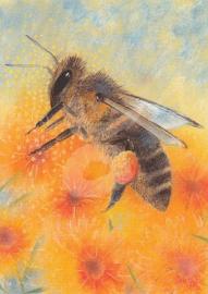 Loes Botman - Klein Insectenboek 4