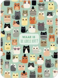 Lali - Waar is de ijdele kat ?