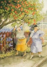 Inge Löök : Appelboom schudden - NR 11
