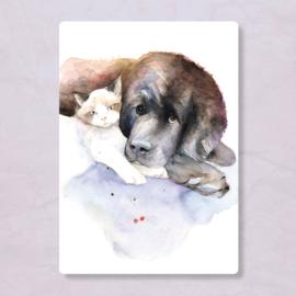 Veer Illustratie - Hond en kat