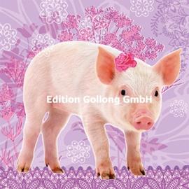 Fotolia - Piggy