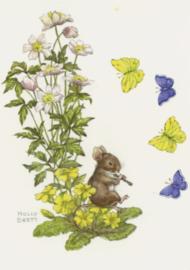 Molly Brett - Vlinders