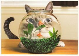 Skowronski & Koch - Kat met goudvissen