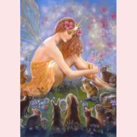 Judy Mastrangelo   -  De fee en het fluwelen konijn