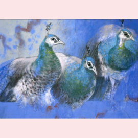 Loes Botman  - Drie jonge pauwen