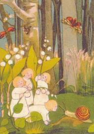 Sybille v Olfers - Het verhaal van de wortelkindertjes