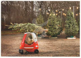 Getty Images - Kerstboom transport