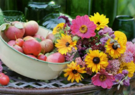 Angelika Linnhoff - Bloemen en appels