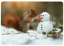 Skowronski & Koch - Eekhoorn met sneeuwpop