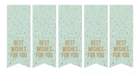 Sticker / Sluitsticker 'Best wishes for You' (Vaantje 3x8cm)  10 stuks €0,99