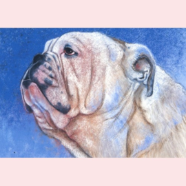 Loes Botman  - Bulldog