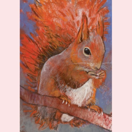 Loes Botman - Eekhoorn