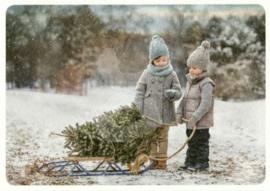 Trevillion Images - Kerstpret