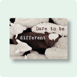 ZintenZ - Dare to be different