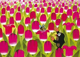 Het molletje - In het tulpenveld
