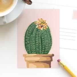 Studio Draak - 'Groen en groei' versie roze