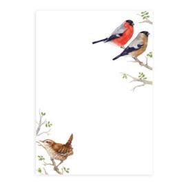 Daniela Drescher -  A6 notitieblok (Vogels)