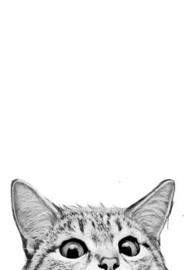 Laura Graves - Cat