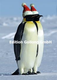 Staphy - Pinguïns met kerstmuts