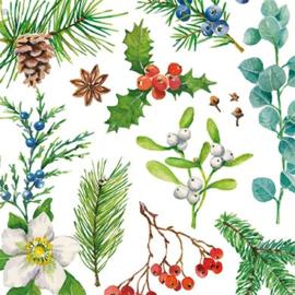 Carola Pabst  - Winters groen