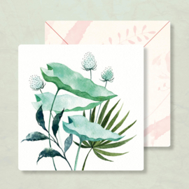 IsaBella Illustrations - Botanisch
