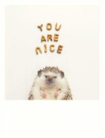 PolaCard - You are nice