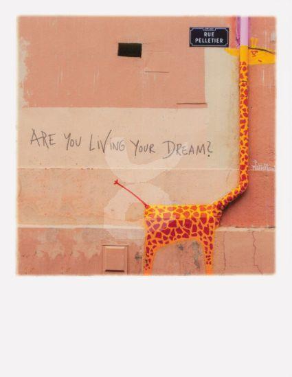 PolaCard - Giraffe