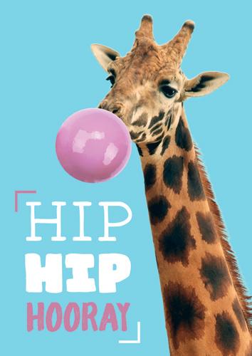 Zweitgeist - Hip Hip Hooray