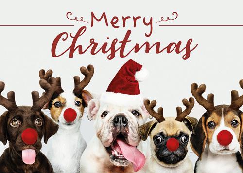 Zweitgeist - Merry Christmas