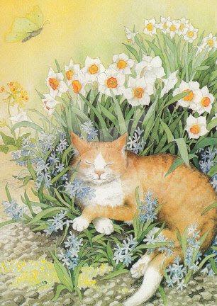 Inge Löök : Kat tussen de bloemen - NR 113